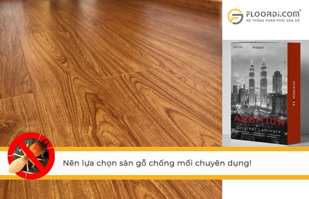 Nên lựa chọn sàn gỗ chống mối mọt chuyên dụng